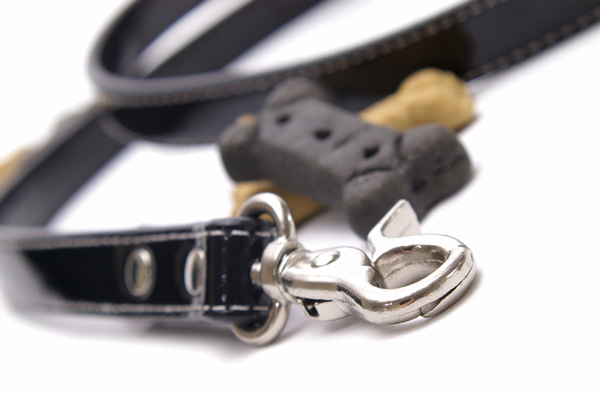 Pet training aids, leads, harnesses and treats avialable form Bowhouse