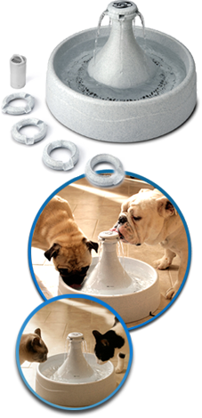 Drinkwell 360 Pet Fountain