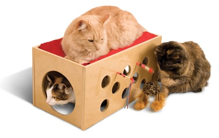 Cat bedding and Housing