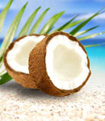 pure fiji coconut