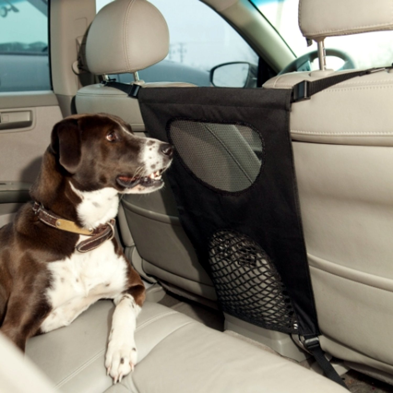 Car Back Seat Barrier For Dogs