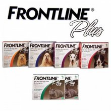Frontline comes in many different varieties for cats and dogs