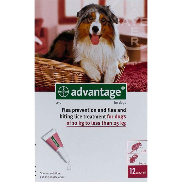 Advantage-Red-Dogs-22-55lbs-(10-25kg)-12-Pack