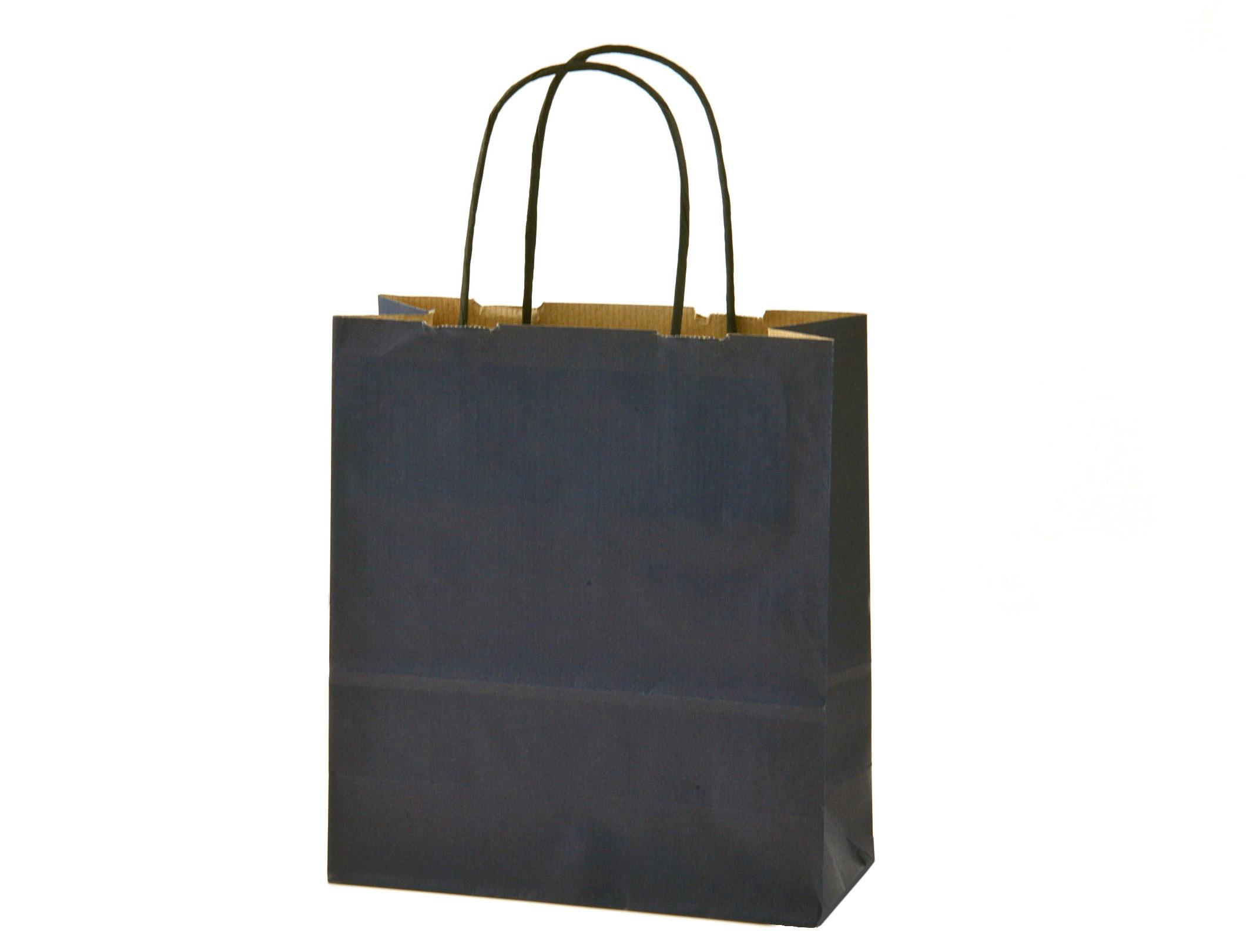 Navy Blue Gift Bags with Black Paper Twist Handles - 19x8x21cm