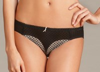 Pleasure State VIP (DD-G) Eternelle Brief