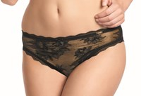 Fauve Evangeline Brief 