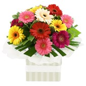 Gorgeous Gerberas, Arrangements From $65