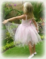Butterfly Fairy Dress, (Dress-up Range)