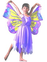 Chiffon Butterfly Fairy, (Dress-up Range)