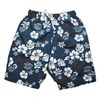 Baby Banz Boardies Blue/ Choc- Sale!