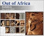 Out of Africa - Animal Rugs