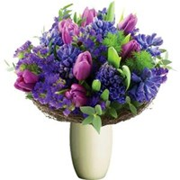 Purple Surprise, From $55