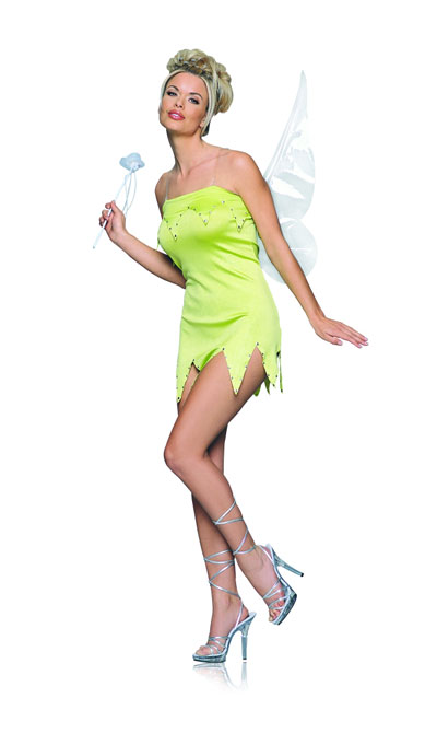 Fairy Fancy Dress Costume