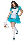 Plus Size Enchanted Alice Costume