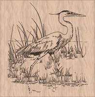 Heron in a marsh