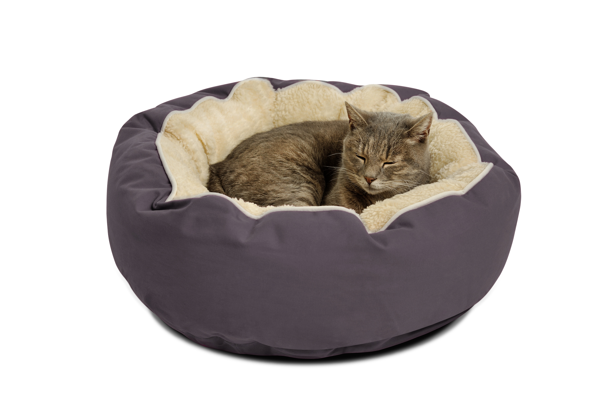 Stylish Top-Rated Cat Bed
