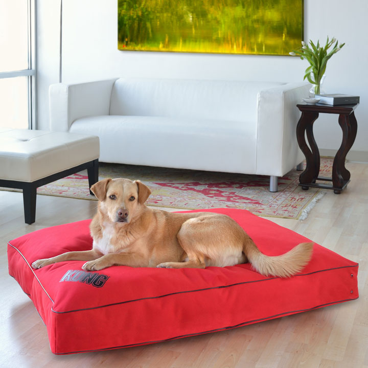KONG rectangular dog bed in red