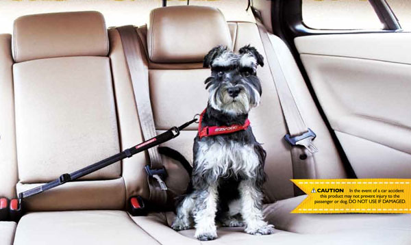 Restraint on Dog Car Seat Belt Restraint