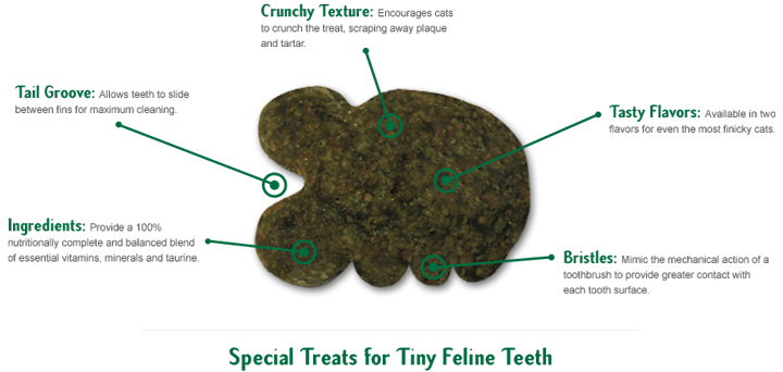 Fline Greenies oral cat treat