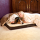 Memory Sleeper Pet Bed - Great for larger dogs with bone, hip or joint problems