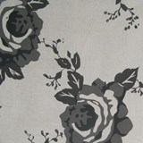 Cloth Rose charcoal