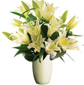 Oriental Lilies, Bunches From $55