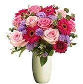 Rose and Gerberas, Bunches From $55