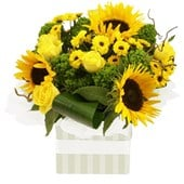Bright Yellow Mixed Flowers, Arrangements From $65