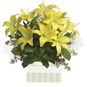 Yellow Lilies, Arrangements From $65