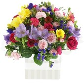 Colourful Mix, Arrangements From $65