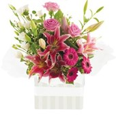 Simply Vibrant, Arrangements From $65