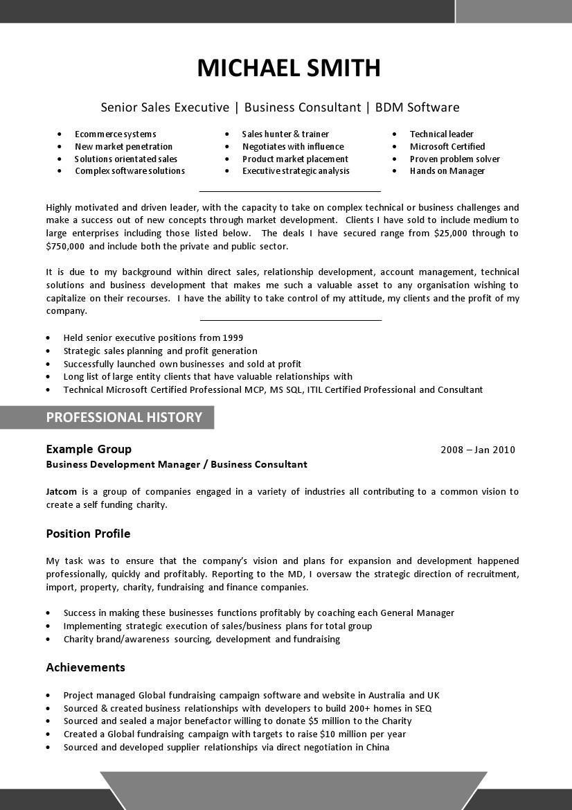 Executive   Senior Management CV Examples  Written