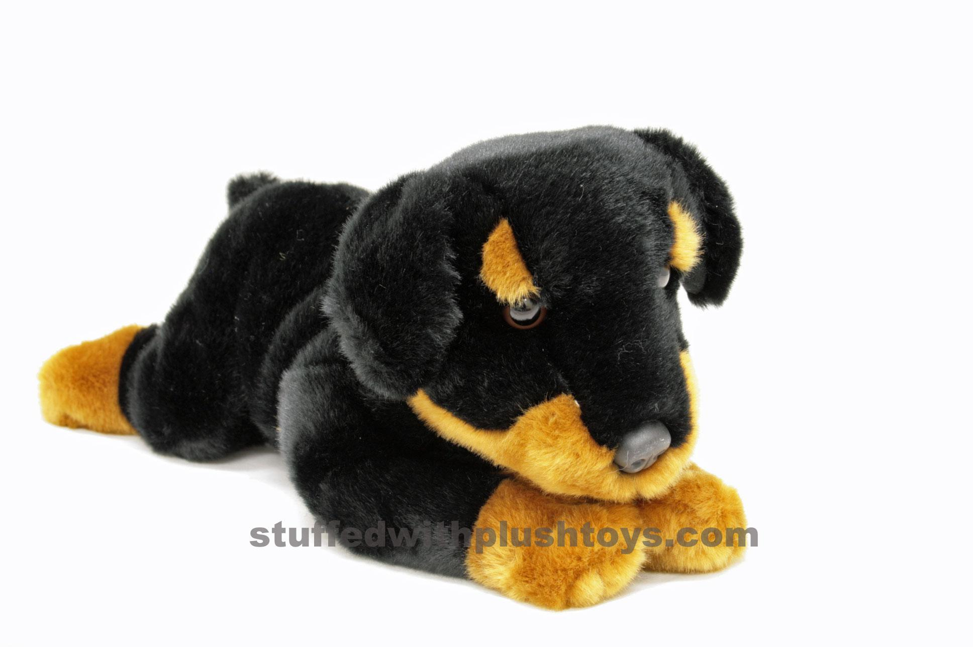 photos compare dog breeds small dog breeds a z smallest dog breeds ...