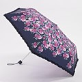 Fulton SuperSlim Umbrella Floral Trail