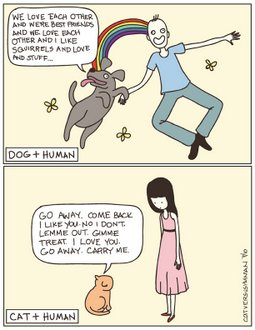 Cats And Dogs Personality Differences