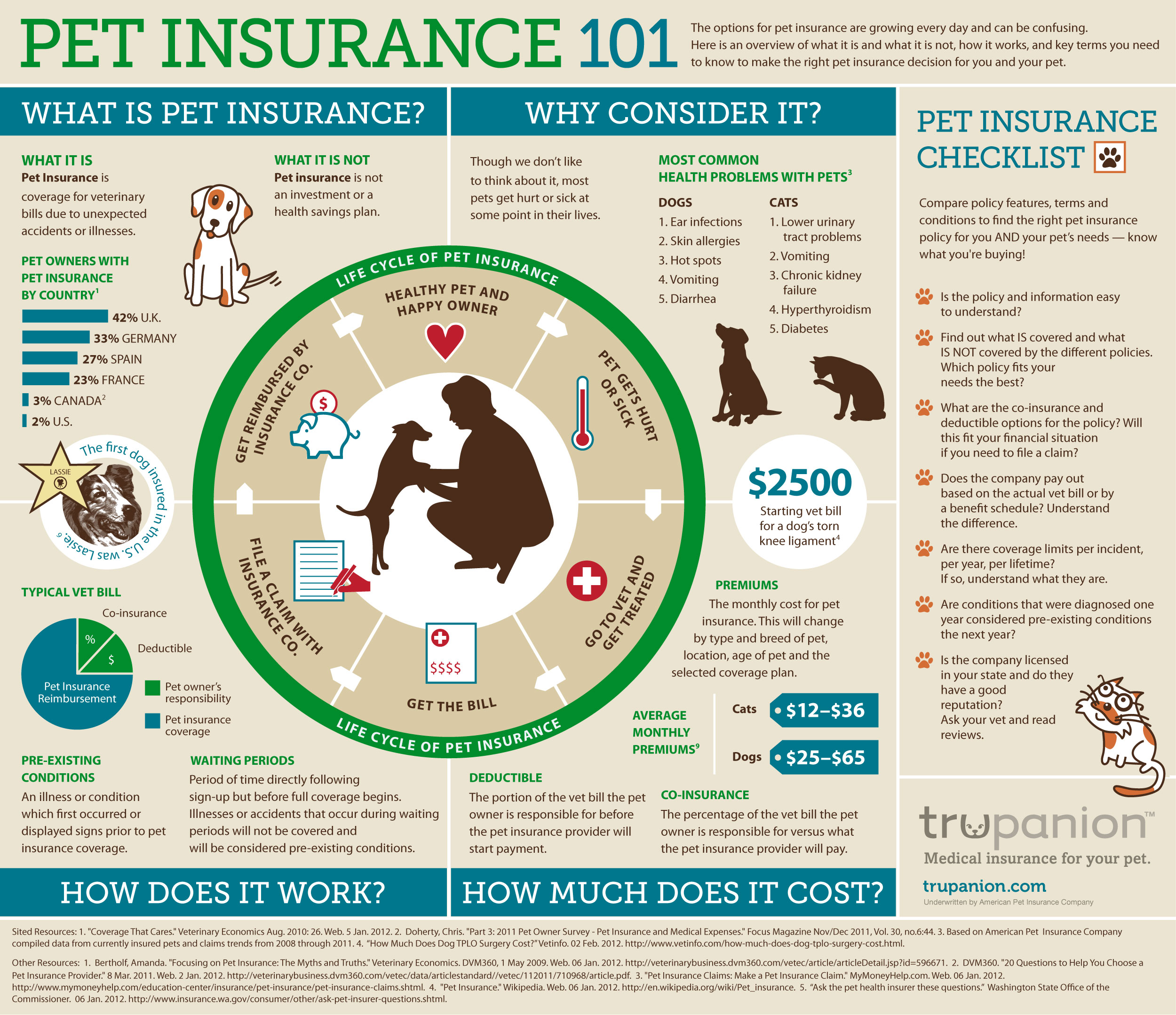 Investigating Veterinary Insurance How To Decide On A