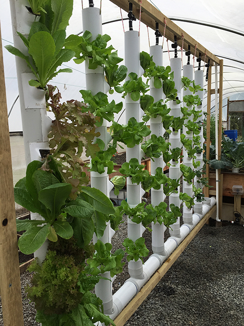 Aquaponics tower system.