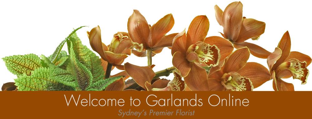 orchids floral arrangement