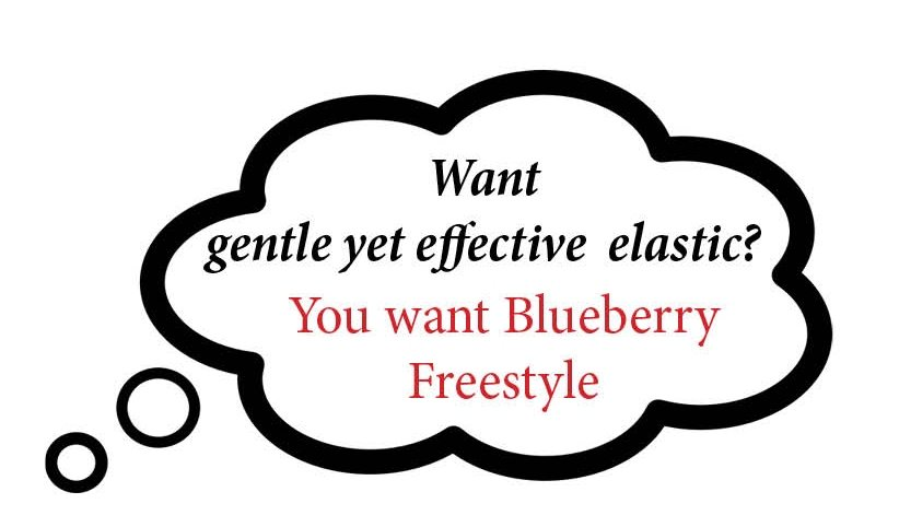 Blueberry Freestyle Swimwear