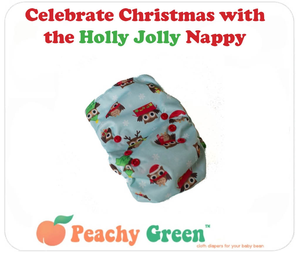 Christmas Design Cloth Nappy by Peachy Green