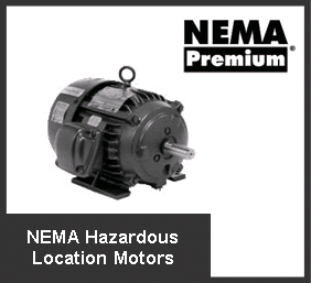 Electric motors wa rewind fasco regal onga pool pump for Hazardous location motor starter