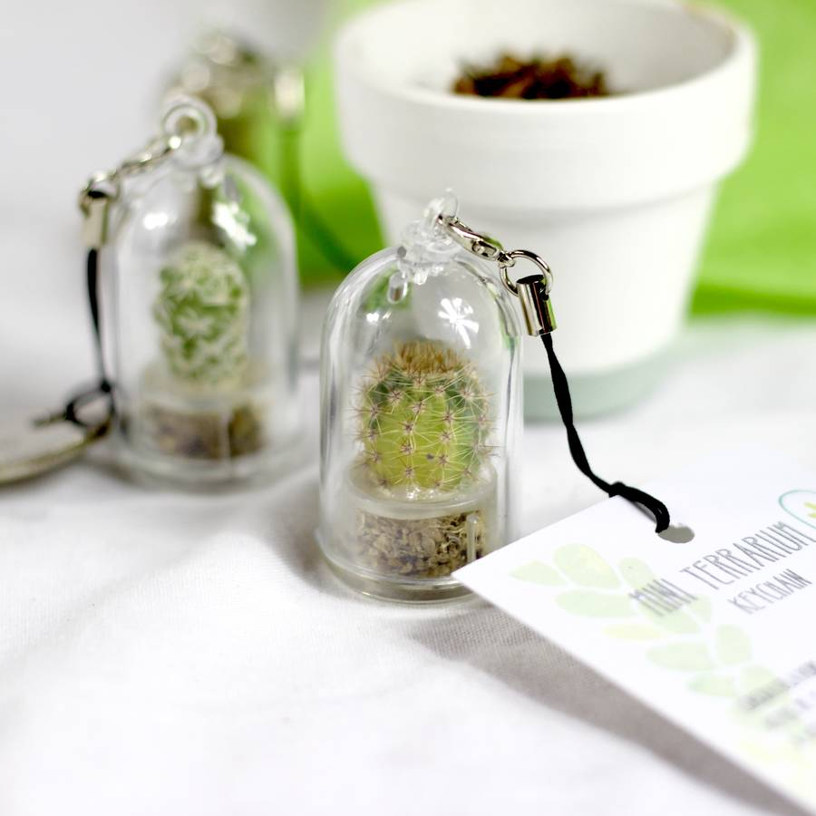 Personalised and Unusual Eco Friendly Garden Gifts | Green Gift monster, UK