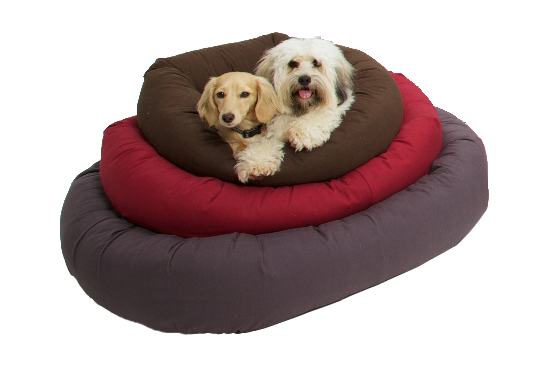 DGS Donut Repelz-It dog bed