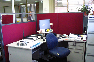Custom Office Work Stations with pin board walls, concealled data cables and perspex windows