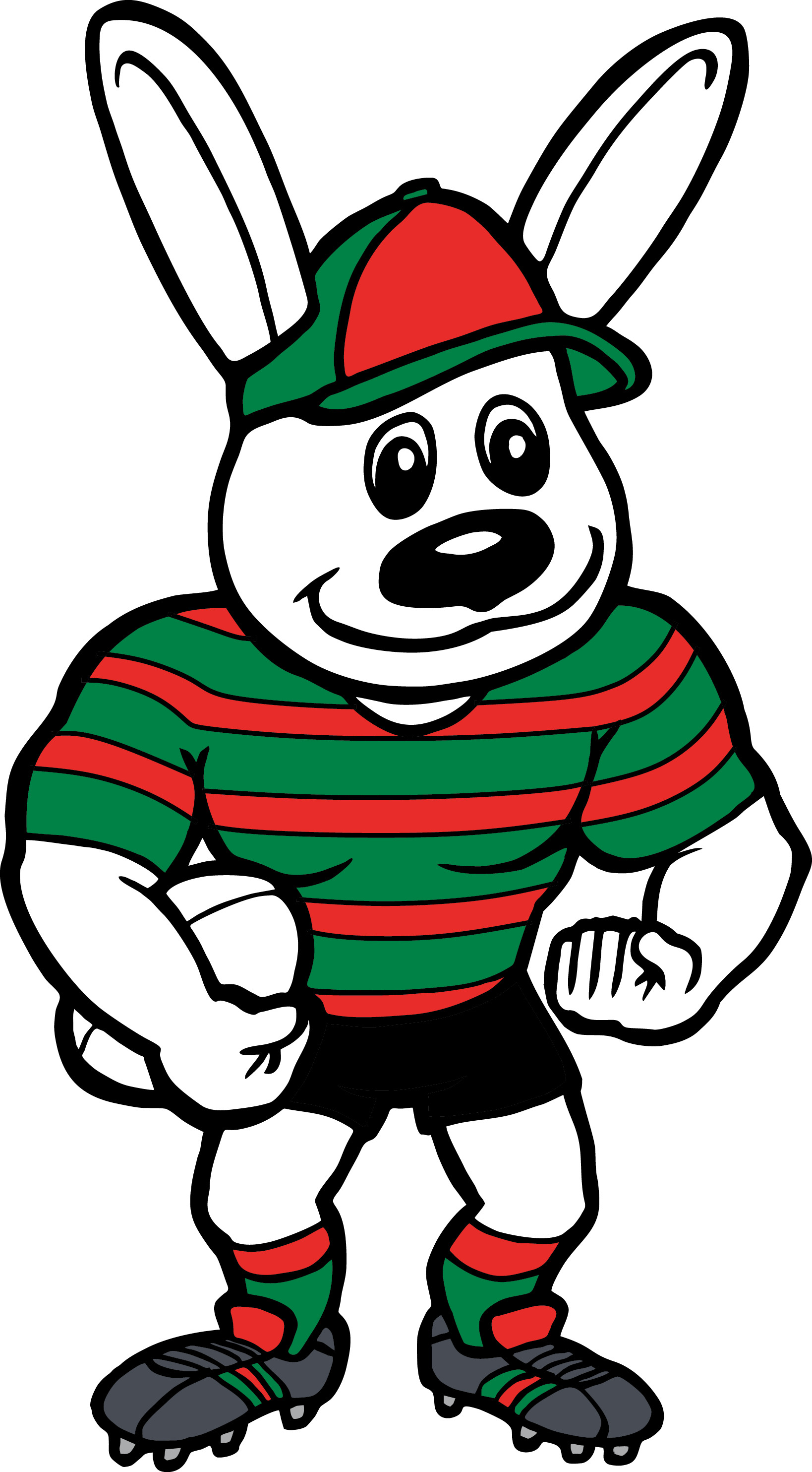 Nrl South Sydney Rabbitohs Mascot Team Socks Pairs
