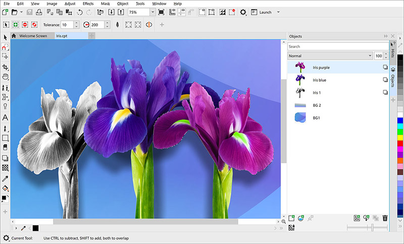 Corel PHOTO-PAINT Standard 2020