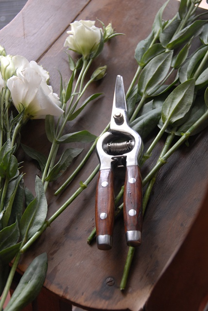 Stainless steel Redwood Flower snips